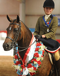 Grand National winner 2007,  Champion Showhunter at the 2008 National Show Horse, with his rider Annabell Mulready who also won Champion  Rider
