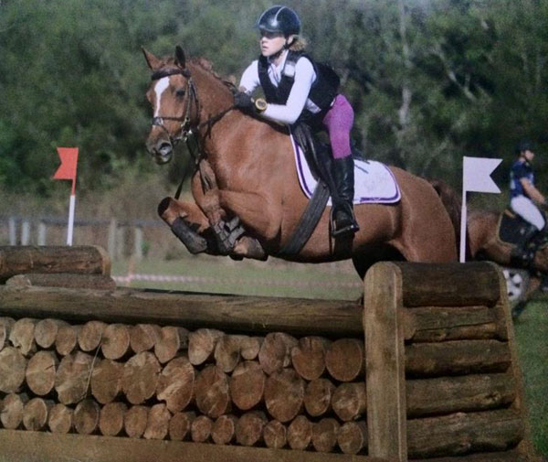King Lodge Jeremy Fisher x Furzey Sweet Charity SOD Pinehurst Concerto.  EA Queensland Eventing Horse of the Year 2014 and 2015
