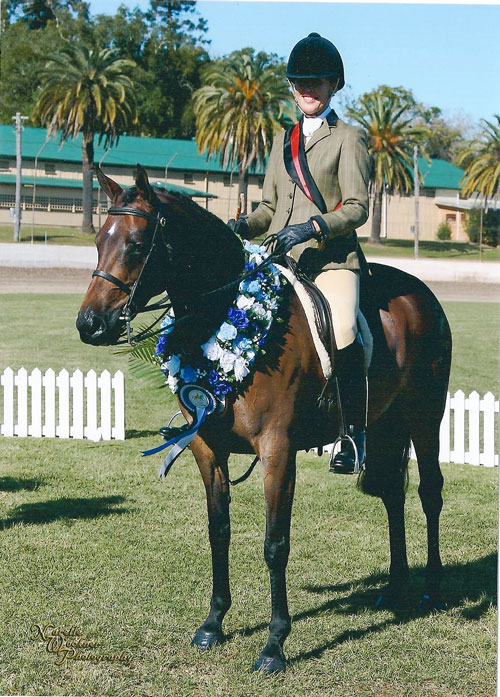 Smartest on Parade, Champion Show Hunter Galloway Nth NSW Championships 2010
