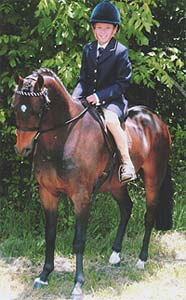 sire Furzey Kit-Cat, winner Saddle Pony Gelding Toowoomba Royal, Supreme Champion Led Narrabri Show