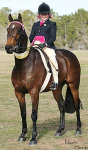 Ridden by Molly Grace Hammond (11),Champion Rider, Champion Galloway at Sydney EFA Interschools 2008